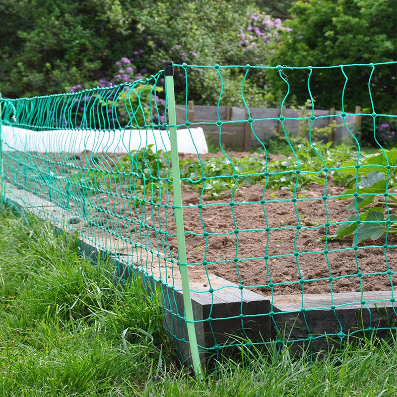 Electric Rabbit Netting 50m Excellent Crop Protection