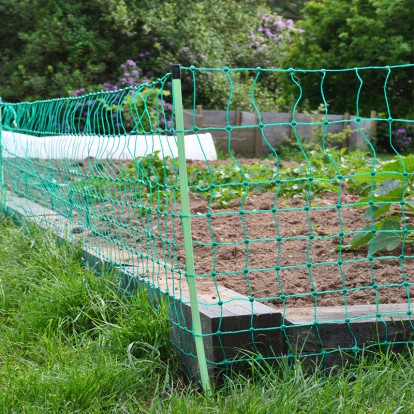 Rabbit netting protecting vegetable crops